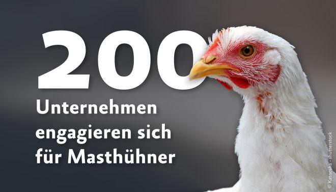 200 Unternehmen erhöhen Masthuhn-Standards