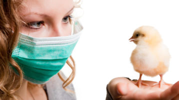 Antibiotikaresistente Keime