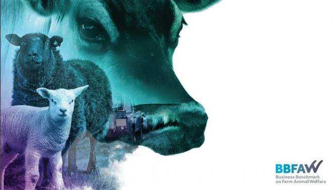 Business Benchmark on Farm Animal Welfare